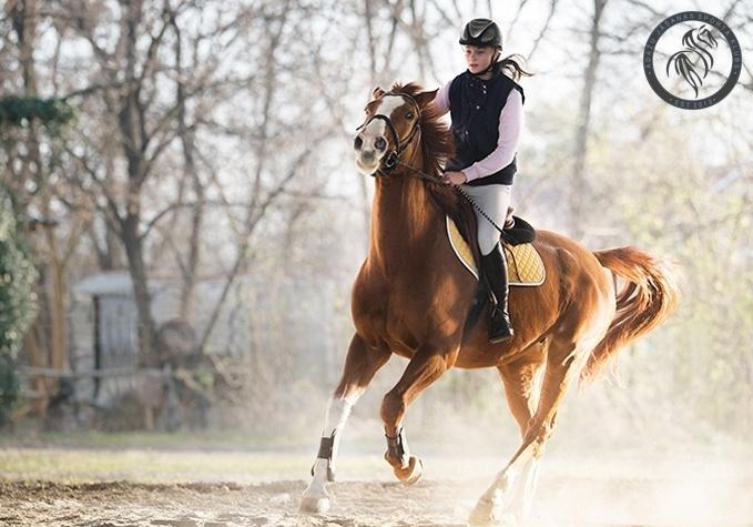 Izjāde zirga mugurā + instruktors